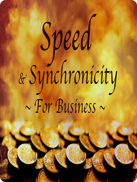 Speed Synch Web 5 cs4